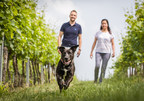 Boehringer Ingelheim donates vaccines to help fight rabies
