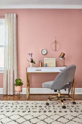 June's Home Office in Bombay Pink, Nashville, Tenn.