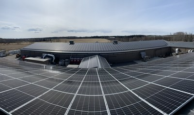 Solar panel installation at Aurora Mountain, Cremona, Alberta (July 2019) (CNW Group/Aurora Cannabis Inc.)