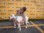 """The Mobil Delvac™ and PEDIGREE® Brands Launch """"Mutts4Trucks"""" Campaign To Support Truckers And Promote The Benefits Of Pet Adoption"""