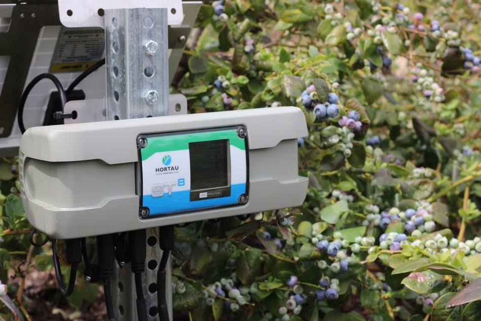 Hortau's technology in a blueberry field (CNW Group/Hortau)