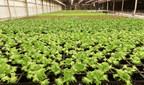 Shenandoah Growers opens next generation USDA certified indoor BioFarms in Virginia