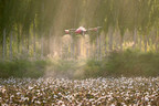 XAG Drone Fleets Take Off for Large-scale Cotton Defoliation Operation in Xinjiang