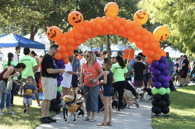 Zesty Paws® joins the fun-filled cause of supporting Orlando's furry friends in need.