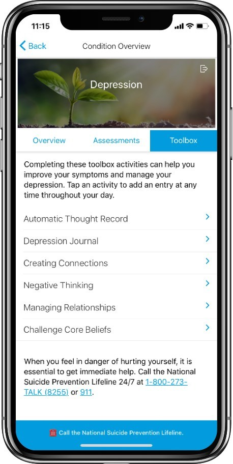 Through The Voyage®, New Ocean's user-facing mobile app, Depression Management delivers personalized self-care plans with embedded digital coaching. Its interactive Cognitive Behavioral Therapy (CBT) Toolbox aims to help employees and members privately self-manage symptoms of depression between provider visits.