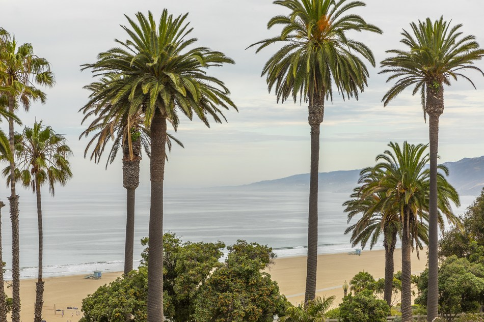 Oceana's Ocean View