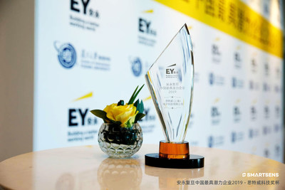 """Ernst & Young Fudan China's Most Promising Company"" Award trophy"