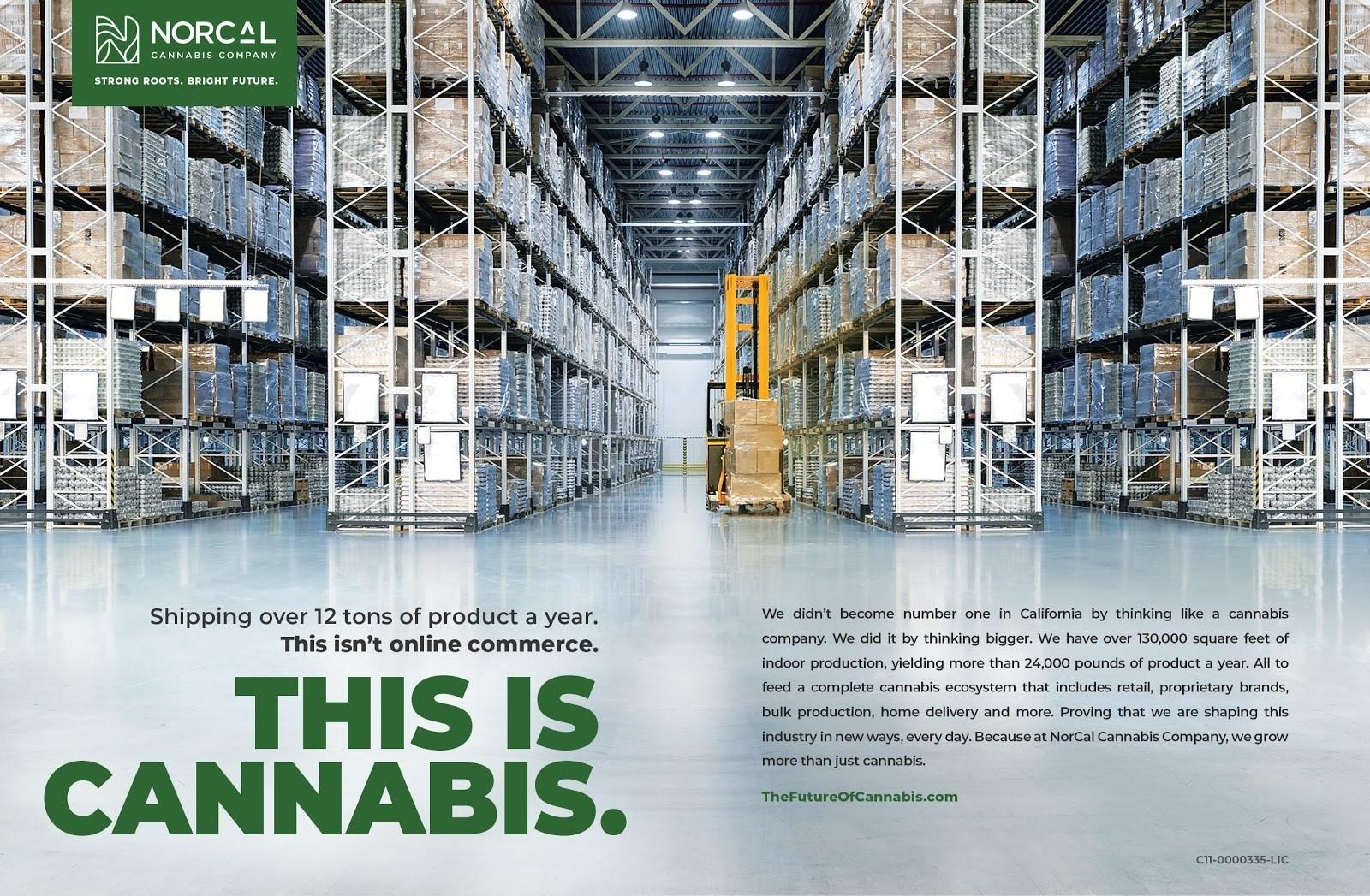 NorCal Cannabis - Educating Investors, Consumers Alike: NorCal's CMO Talks Cannabis Marketing