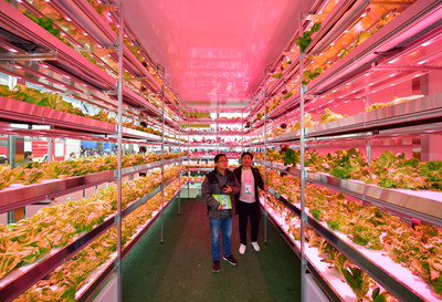 "A ""plant factory"" that can automatically control lighting, temperature, humidity, carbon dioxide concentration and other environmental conditions is on display at the Expo. (PRNewsfoto/China Yangling Agri Expo Comm.)"