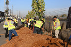 AB&I Foundry Joins Supervisor Miley's Tree Planting Initiative To Beautify Oakland