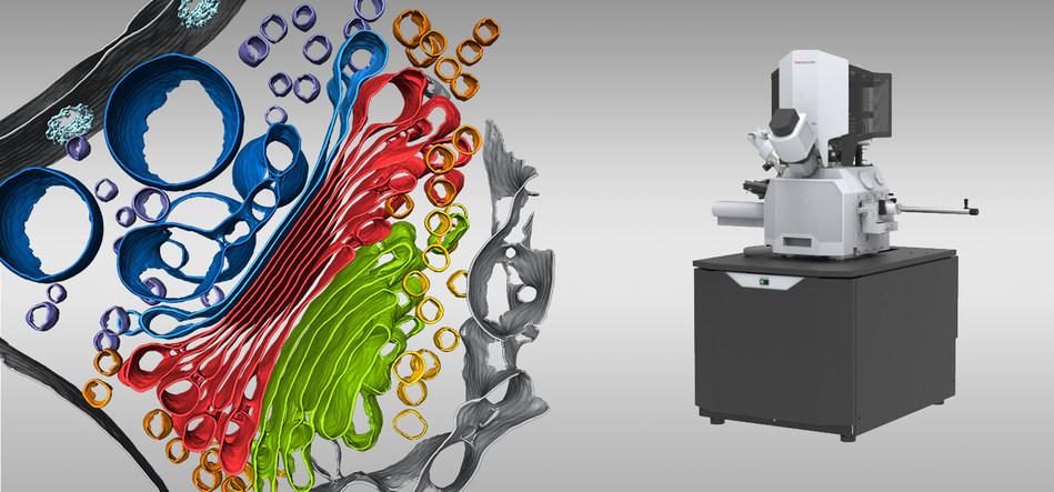 Thermo Scientific Aquilos 2 Cryo-FIB