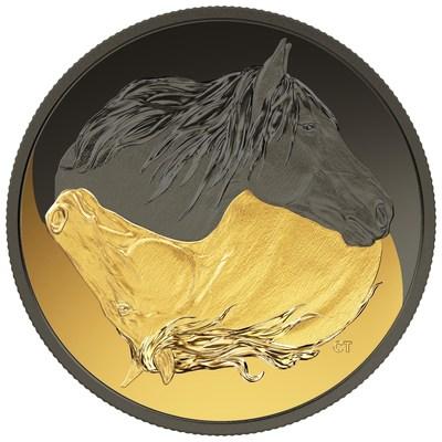 La pièce de collection plaquée en or et en rhodium noir de la Monnaie royale canadienne, honorant le cheval canadien. (CNW Group/Royal Canadian Mint)
