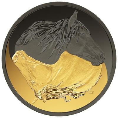 A moeda da Casa da Moeda Real Canadense folheada em ródio dourado e preto celebra o cavalo canadense (CNW Group/Royal Canadian Mint)
