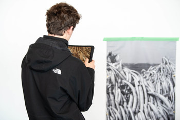 A student sees the impact of declining biodiversity, represented through a pile of elephant and rhinoceros tusks, using through augmented reality.   Photo: Tanya Kirnishni/ Canadian Geographic (CNW Group/Royal Canadian Geographical Society)