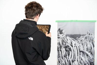 Un étudiant voit l'impact du déclin de la biodiversité sur un tas de défenses d'éléphants et de rhinocères, en utilisant la réalité augmentée. Photo: Tanya Kirnishni/ Canadian Geographic (Groupe CNW/Société géographique royale du Canada)