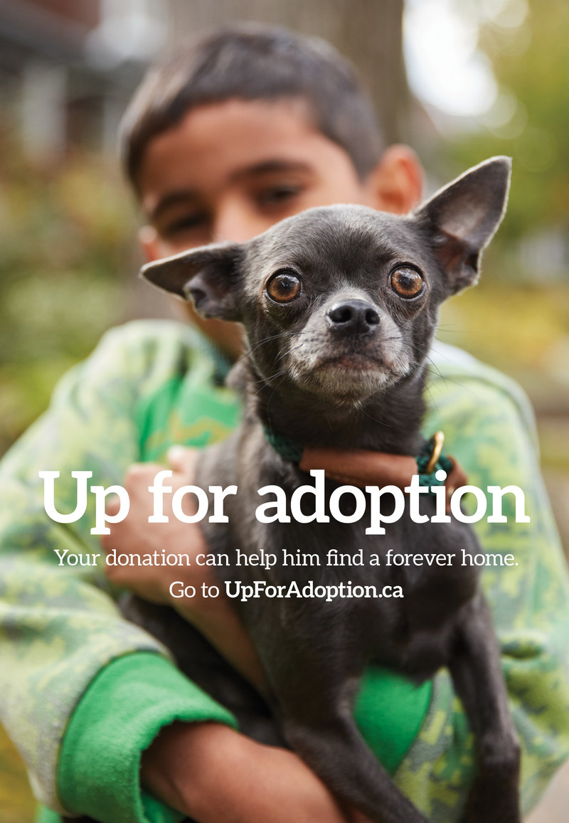 New advertising campaign for the Dave Thomas Foundation for Adoption-Canada. Learn more at UpForAdoption.ca. (CNW Group/Dave Thomas Foundation for Adoption-Canada)