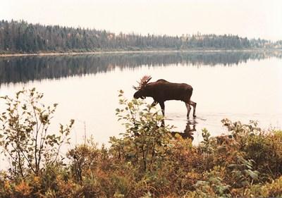 Les tirages au sort demeurent le moyen le plus équitable de répartir les secteurs exclusifs de chasse des réserves fauniques de la Sépaq, parmi les plus beaux, les plus vastes et les plus giboyeux du Québec. (Groupe CNW/Société des établissements de plein air du Québec)