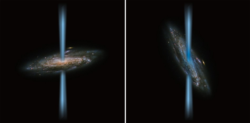 Artist's concept of a jet from an active black hole that is perpendicular to the host galaxy (left) compared to a jet that is launching directly into the galaxy (right) illustrated over an image of a spiral galaxy from the Hubble Space Telescope. SOFIA found a strange black hole with jets that are irradiating the host galaxy, called HE 1353-1917. The galaxy has 10 times more ionized carbon than its stars could produce. The gas, illustrated in blue in the right image, is concentrated near the galaxy's center, which indicates that the intense radiation from the black hole's jet is the source of the excess gas. This contradicts the long-held assumption that ionized carbon is a good indicator of newborn stars, and forces scientists to re-evaluate the effect black holes have on galaxies. (Credit: ESA/Hubble&NASA and NASA/SOFIA/L. Proudfit)