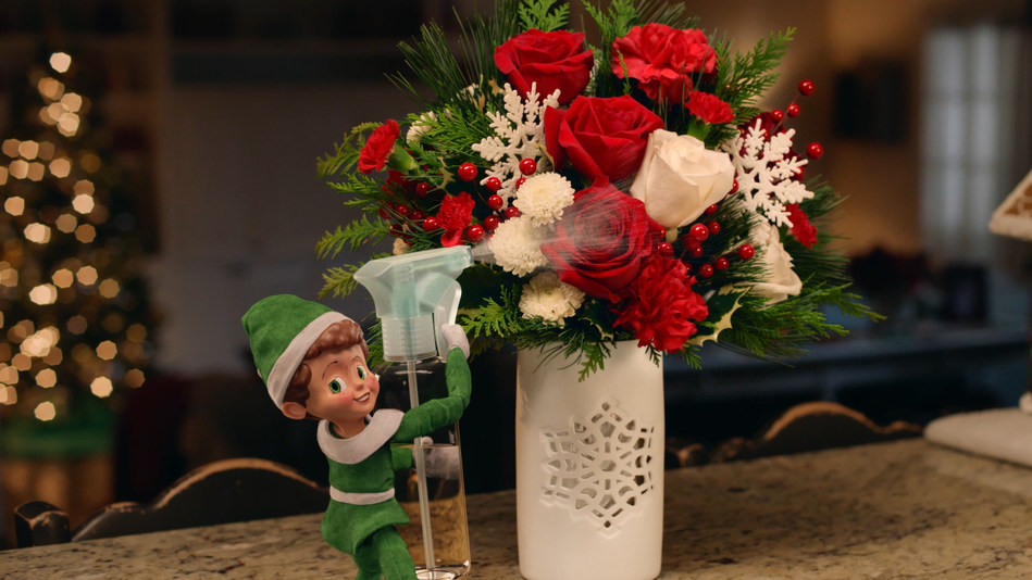 "Teleflora unwraps new campaign, ""The Elf,"" to pay tribute to those who create holiday magic."
