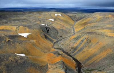Cailloutis de péridotite oxydée, habitat de la rare drave des monts de Puvirnituq © Benoît Tremblay (Groupe CNW/Comité sur la situation des espèces en péril au Canada)