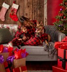 Petco Offers Helpful Safety Tips and Gift Ideas for Festive Holiday Season with Pets