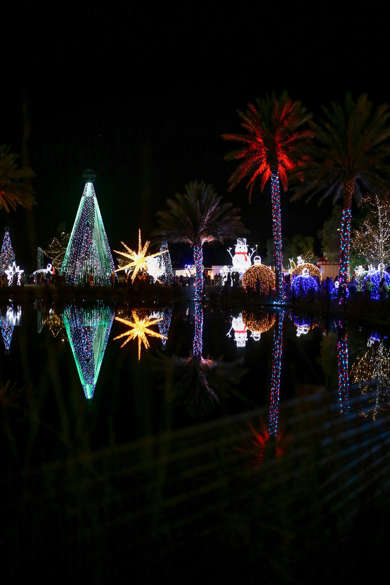 More than 3,000 guests attend the opening of the AMAZE Light Festival in Norco. They enjoyed a coordinated light show with more than 1.5 million colored LED lights, offering 16 million color combinations, moving in perfect unison.