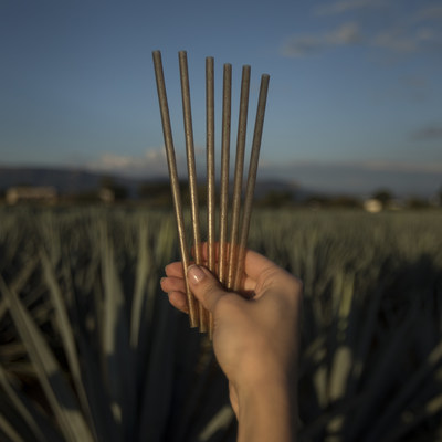 Jose Cuervo unveils first-of-its-kind biodegradable drinking straw made from upcycled agave