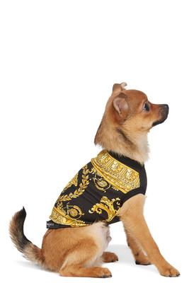 Artículos para perros de SSENSE (CNW Group/SSENSE)
