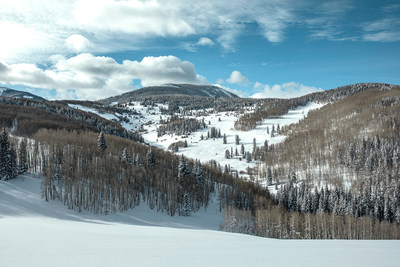 A look into McCoy Park at Beaver Creek Resort, scheduled to open during the 2020-2021 season. McCoy Park will add 250 acres of lift-served terrain. Photo Credit: Futuristic Films & Vail Resorts