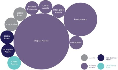 Breakdown of Financial Recording For Cryptoasset Holdings (CNW Group/Chartered Business Valuators Institute)