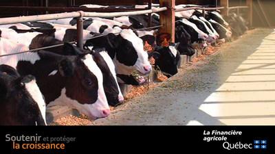 Près de 16 millions de dollars en soutien aux producteurs de bovins grâce au Programme d'assurance stabilisation des revenus agricoles (Groupe CNW/La Financière agricole du Québec)