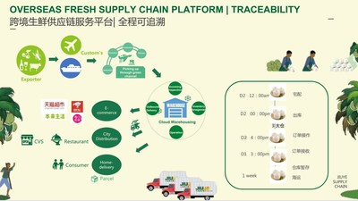 Jiuye SCM's global all-in-one platform for cross-border cold chain supply