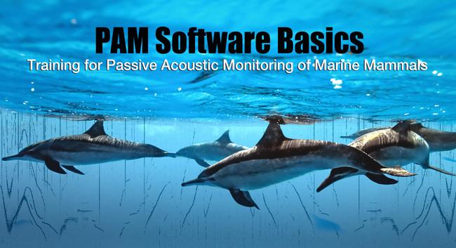 PAM Software Basics