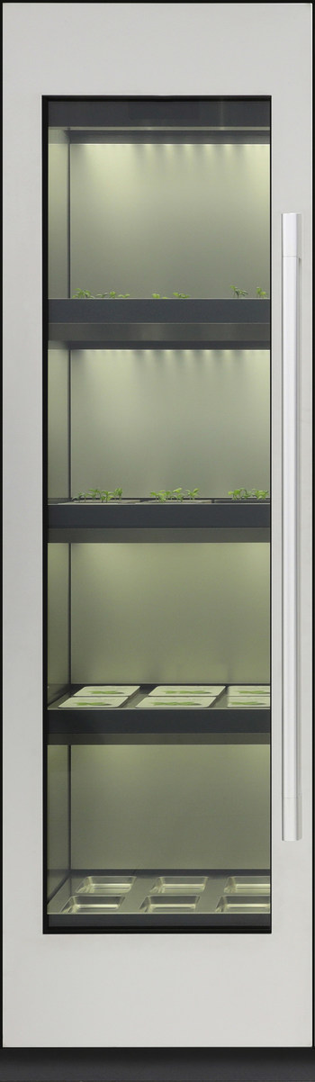 LG Electronics (LG) will unveil an indoor gardening appliance at CES® 2020, its first foray into the booming indoor gardening movement.