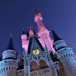 """Top eBay for Charity sales in 2019 also included an overnight stay in the Cinderella Castle Suite at Magic Kingdom® Park, custom """"Moon Landing"""" Under Armour Curry 6 Shoes Worn & Signed by Stephen Curry, UFC Ultimate Fan Experience + Private Meet & Greet with Dana White. Campaigns have benefited organizations like The V Foundation for Cancer Research and Homes For Our Troops."""