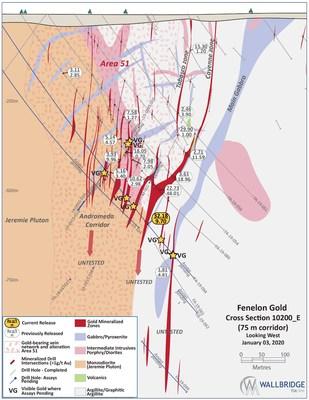 Figure 4: Fenelon Gold, Cross Section 10200_E (CNW Group/Wallbridge Mining Company Limited)