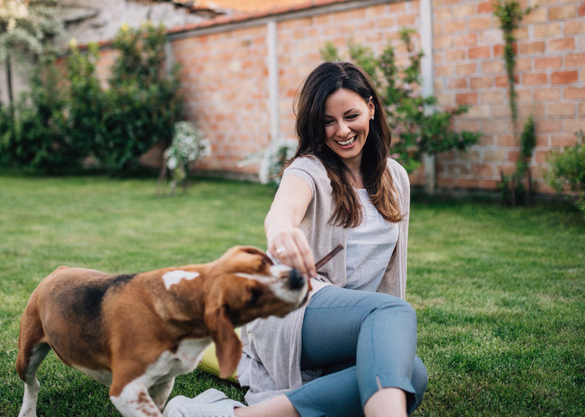 Superior Farms Pet Provisions® Launches Beauty Stix and Beauty Springz Collagen Treats for Dogs