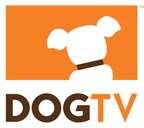 DOGTV Offers Pet Parents The Chance To Make Their Dog Instafamous As The Chief Puppy Officer