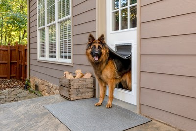 PetSafe® Releases Extreme Weather Aluminum Pet Door™ for Maximum Durability Just in Time for Winter