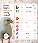 Fast-Food Brands' Chicken Welfare Standards Shockingly Low In New Global Ranking