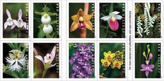 U.S. Postal Service to Issue Wild Orchids Forever Stamp Feb. 21