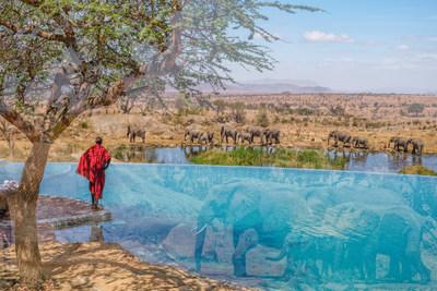 Using double exposure, Ruel merges distinct subjects to create unique perspectives. (Nicolas Ruel, Serengeti 32).