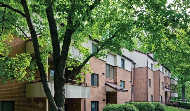 The Chimneys of Cradlerock, in Columbia, Maryland, is a pet-friendly community featuring 198 residential units.