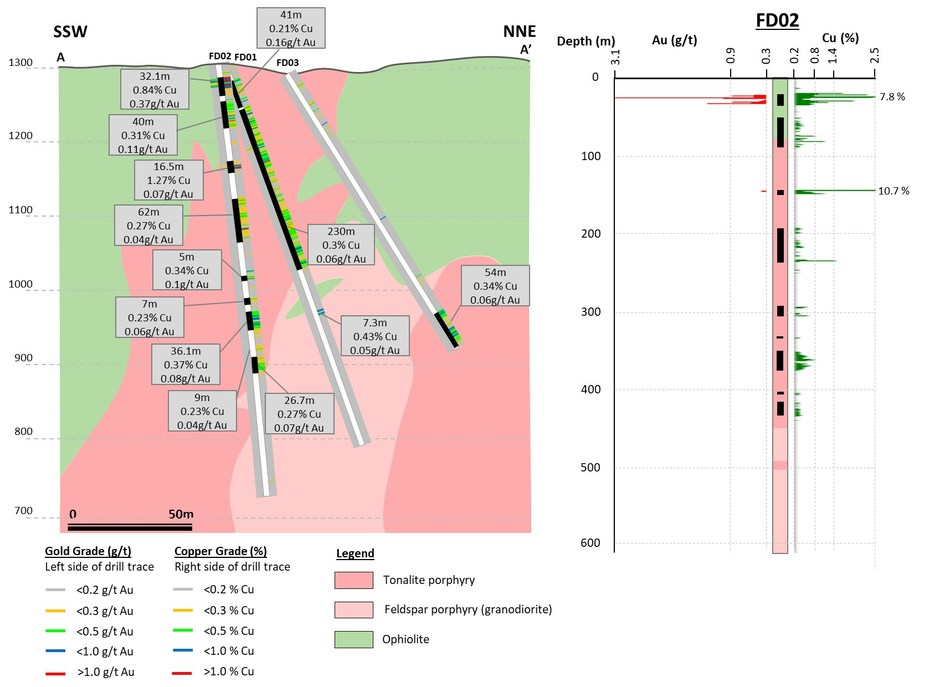 Figure 6. SSW-NNE cross section with selected drill intercepts of Findiklidere prospect. (CNW Group/Alacer Gold Corp.)