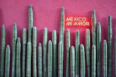TANE crea uno de los hot spots más instagrameables de México: «MÉXICO MI AMOR»