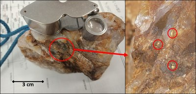 Figure 2: Visible gold circled in red in surface sample at Hidden Secret (CNW Group/RNC Minerals)