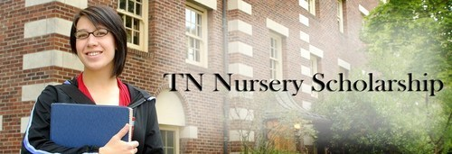 Tn Nursery Offers 1500 College Scholarship To A Student In Need