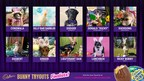 """Cadbury Brand Announces Finalists In This Year's """"Bunny Tryouts"""""""
