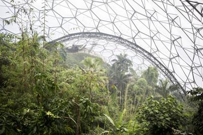 Alberto Giuliani, Eden Project Biospheres, Cornwall, UK, 2017. Courtesy of the artist. (CNW Group/Scotiabank)