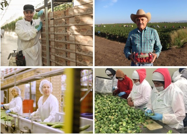 National Farmworker Awareness Week recognizes the skills of those producing our fresh fruits and vegetables
